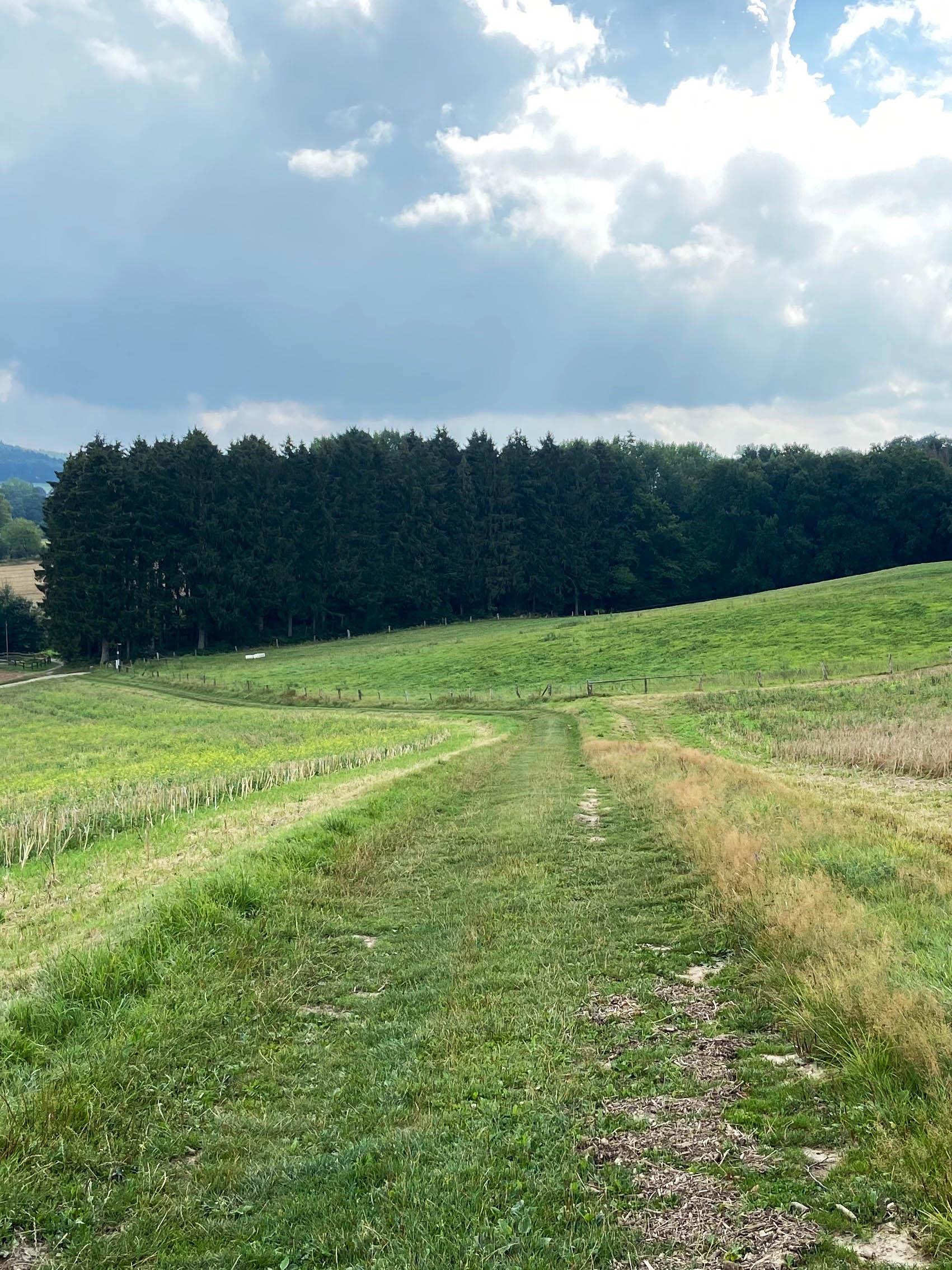 Velden Teutoburger Wald